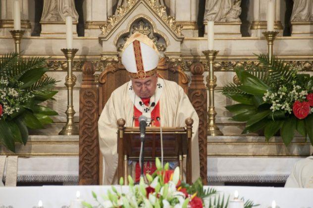 kardinal vinko puljić