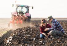 Poljoprivrednici: Prođe li novi Zakon o sjemenu, možemo zatvoriti OPG-ove koji proizvode od starih sorti