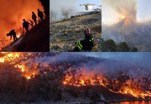 požar vatrogasci brač kanaderi